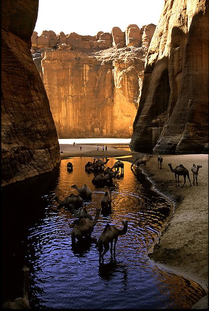 Chad -Guelta d'Archéï