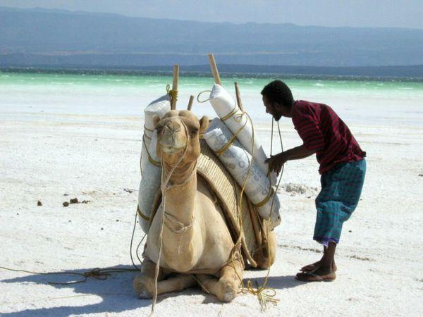 Djibouti 01
