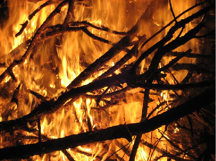 Foc foc