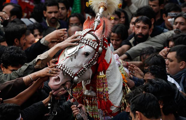 Shi'ite men touch a decorated horse during a procession in Lahore, Pakistan